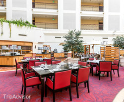 The Olive Restaurant at the Sheraton Krakow Hotel