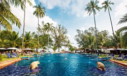 Imperial Boat House Beach Resort, Koh Samui