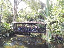 Jardin Botanico Los Balsos