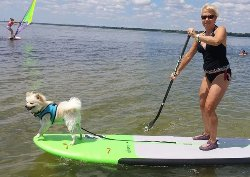 Adventure Surf Lessons and Paddleboarding