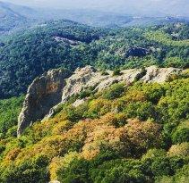 Dadia-Lefkimi-Soufli Forest National Park