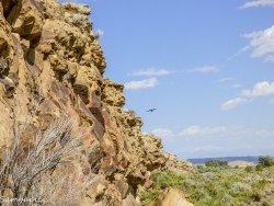 Legend Rock Petroglyph Site