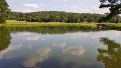 Has a beautiful lake beside it with ducks. A nice stroll