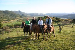 Horseback Rides Santa Cruz - Tours