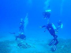Aqaba International Dive Center