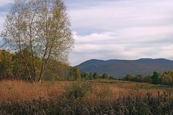 Mountain Meadow Preserve
