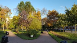 Kamskiy Garden