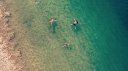 Marea Alta Ocean Adventures