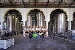 Domno Importadora Winery