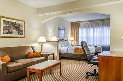 Comfort Suites Penn State