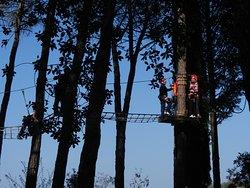 Parcallario Adventure Park into the Monti Iblei