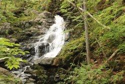 MacIntosh Brook Trail