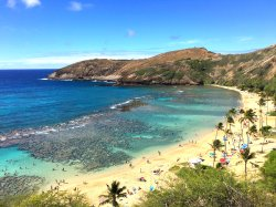 Hawaiian Ocean Promotions - Day Tours