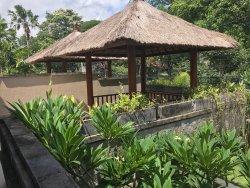 Blissful Bali