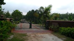 """The Main Entrance with the """"Green"""" Main Gate"""