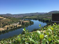 Douro Wonderful Events