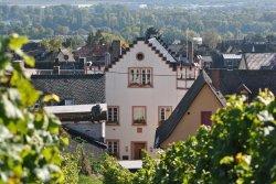 Weingut Gutsausschank Eibinger Zehnthof