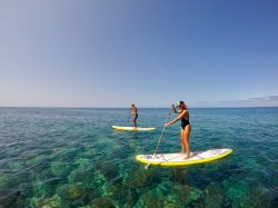Madeira Surf & SUP Guide