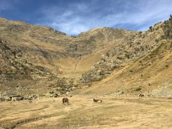 Percanela-Les Fonts-Pla de l'Estany Trail