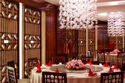 YUE Chinese Restaurant