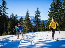 SkitourSchool