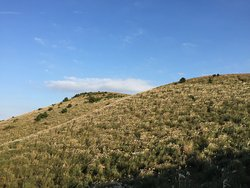 Yongnuni Oreum Volcanic Cone