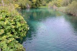 Burgeti Lakes