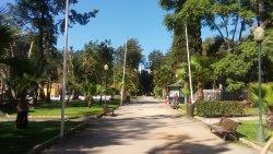 Alameda João de Deus Garden