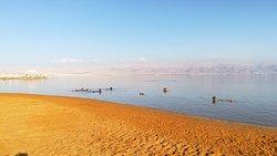 חוף עין בוקק