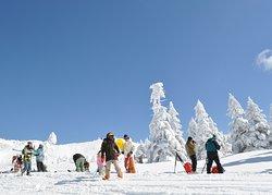 Pilatus Tateshina Ski Resort