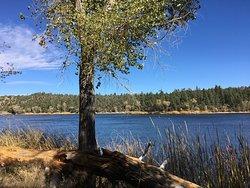 Lynx Lake Recreation Area