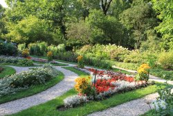 Botanical Gardens (Ogrod Botaniczny)