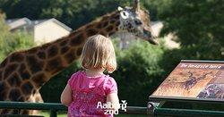 Aalborg Zoologiske Have