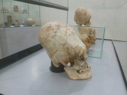 Paracas History Museum -  Juan Navarro Hierro
