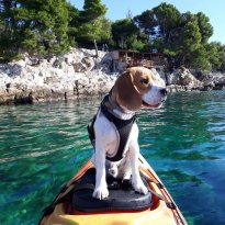 Sea Kayaking Cavtat