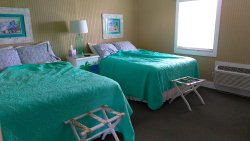 $84–$106/night, excellent location, shower only trickles