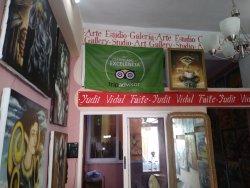 Yudit Vidal Faife