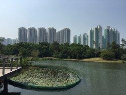 Tin Shui Wai Park