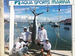 Aqua Sports Center and Scuba Dive
