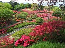Komuroyama Park
