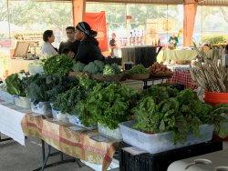Farmers Market at Imperial Sugar Land