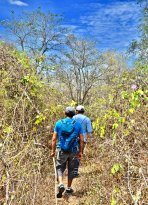 Tour in the Amotape Hills National Park with our guide José