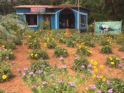 Chunalur Peafowl Sanctuary