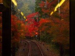 Eizan Railway Momiji Tunnnel