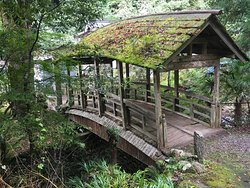 Yanetsuki Covered Bridge - Roman Yatsuhashi