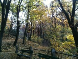 Horsky Park