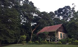 Bobiri Forest Reserve