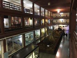 Museo de Ciencias Naturales El Carmen