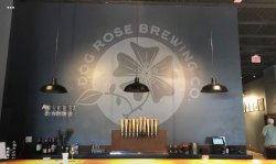 Dog Rose Brewing Company