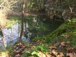 Wild Basin Preserve